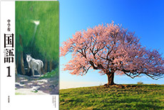 亀が森の一本桜