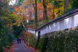 三千院の白壁と紅葉