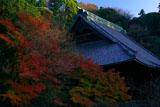 妙本寺 冬紅葉と祖師堂