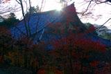 神護寺金堂から昇る朝陽