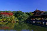 平安神宮 東神苑の紅葉