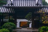 興聖寺中雀門と山門