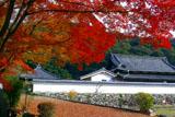 紅葉と興聖寺衆寮