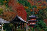 三室戸寺三重塔と紅葉