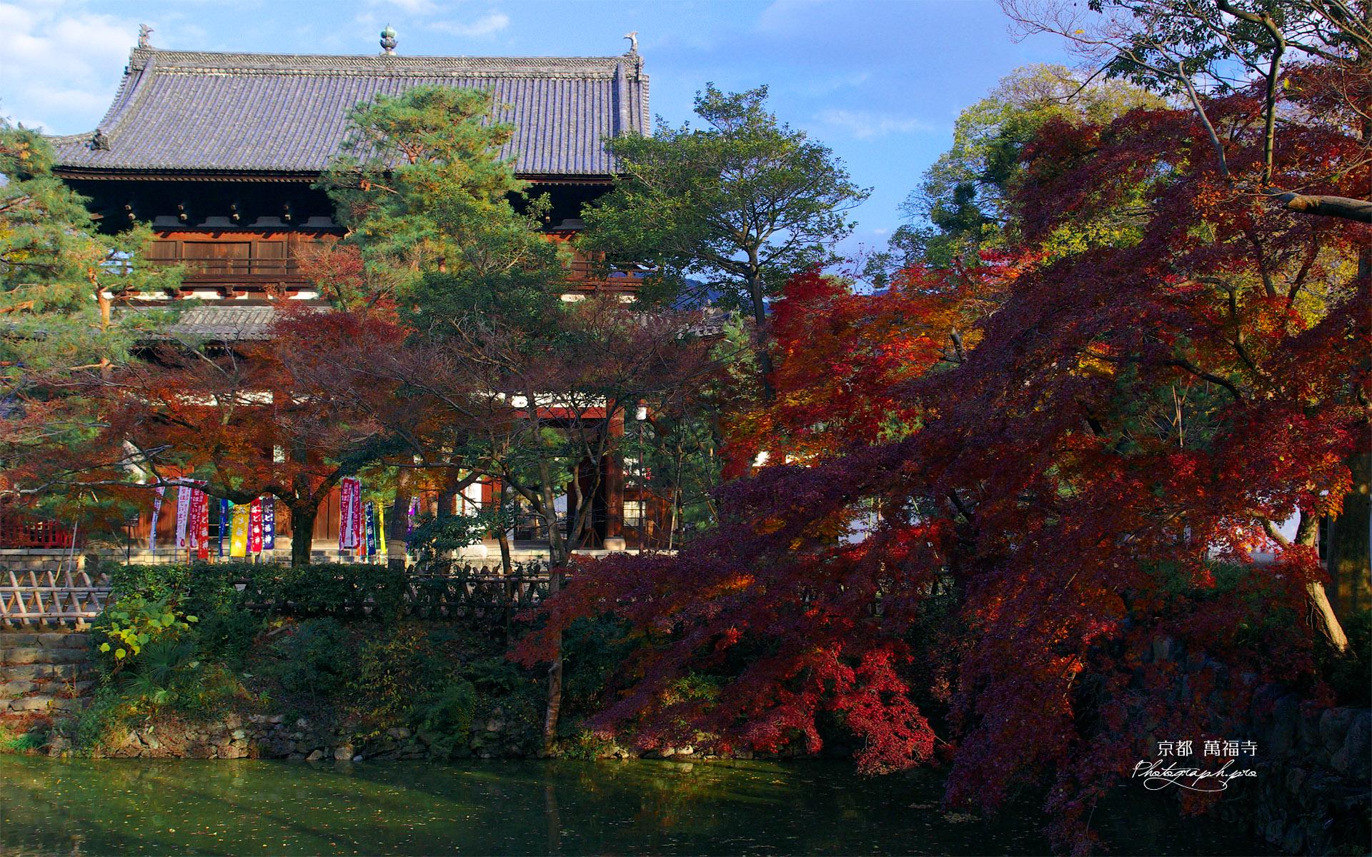紅葉の萬福寺三門
