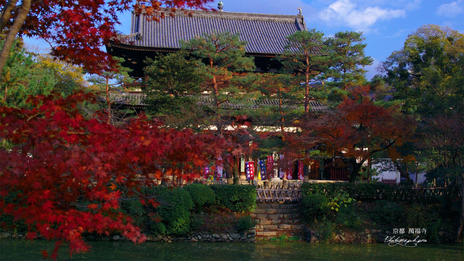 紅葉越しの萬福寺山門
