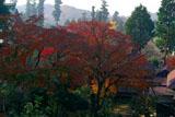 紅葉の円覚寺境内