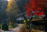 東慶寺 紅葉と金仏