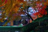 明月院の冬紅葉