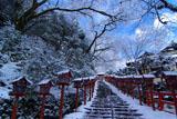 貴船神社 南参道の雪の華