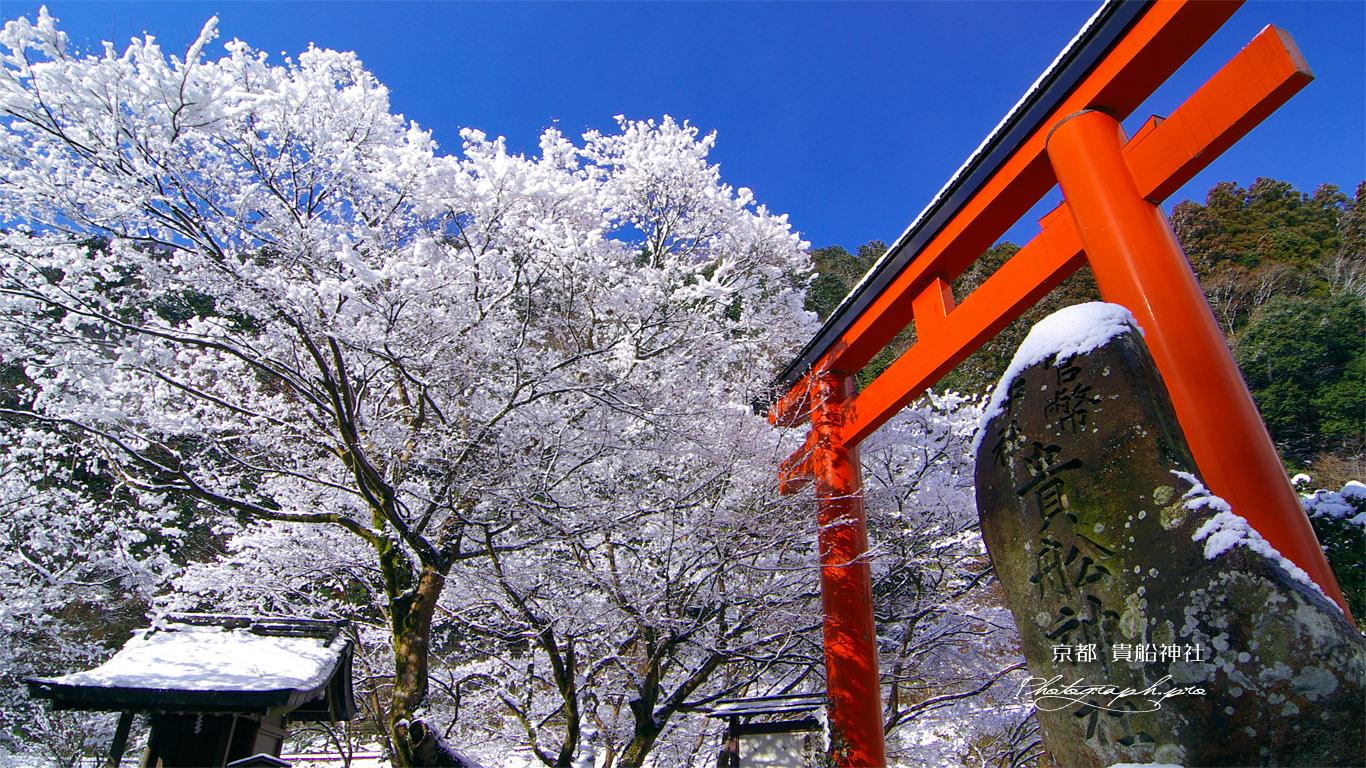 貴船神社 梶取社の雪の花 壁紙