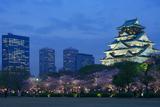 大阪城公園の桜 桃山建築と現代建築