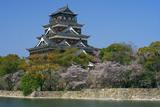 広島城の桜 内堀