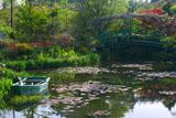 ガーデンミュージアム比叡 睡蓮の庭