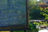 ガーデンミュージアム比叡 睡蓮の池
