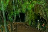 浄智寺の竹林とやぐら