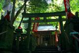 佐助稲荷神社 鳥居越しの拝殿
