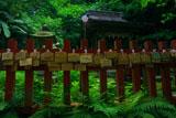 佐助稲荷神社 本殿の絵馬とアジサイ