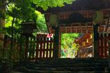 貴船神社 北門越しの七夕飾り