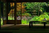 浄智寺客殿からヤナギハナガサ