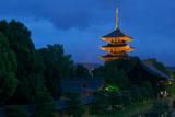 東寺五重塔ライトアップ