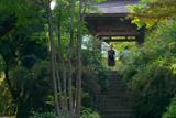 海蔵寺 ハギと山門