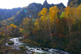 紅葉の石狩川