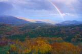 知床峠の副虹