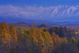 深山峠からオプタテシケ山
