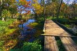 知床五湖の遊歩道