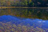 知床五湖の5湖