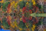 紅葉の湖面