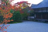 仁和寺白書院と南庭