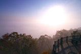 サテライト展望台からの釧路湿原