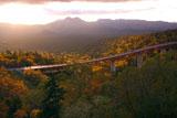 三国峠の松見大橋