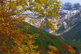 紅葉と上ホロカメットク山
