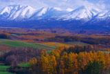 美瑛富士からオプタテシケ山