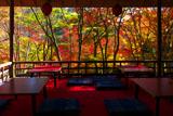 高雄茶屋の紅葉