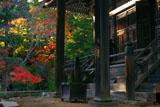神護寺毘沙門堂と紅葉