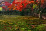 神護寺地蔵院庭園の紅葉