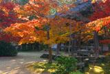 西明寺の紅葉と鐘楼