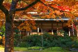 西明寺の紅葉と客殿