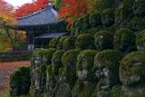 愛宕念仏寺の羅漢と紅葉の地蔵堂