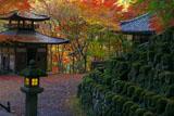 紅葉の愛宕念仏寺