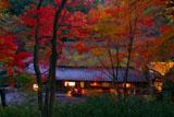 宵の平野屋