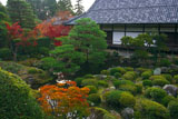 京都等持院 西苑の紅葉
