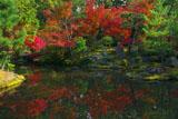 京都等持院 東苑心字池の水映紅葉