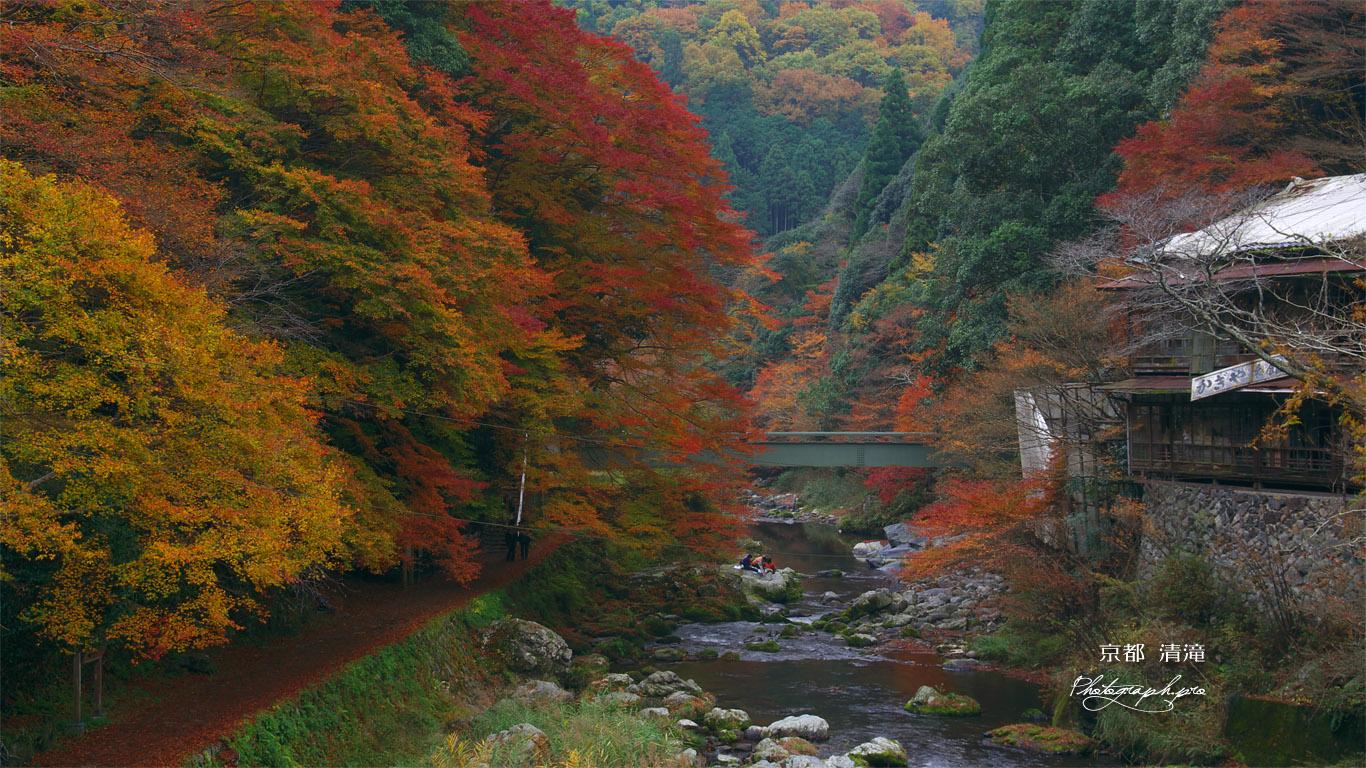 旧かぎや旅館と紅葉の清滝川 壁紙