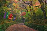 紅葉の赤山禅院参道
