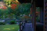青蓮院 小御所から相阿弥の庭